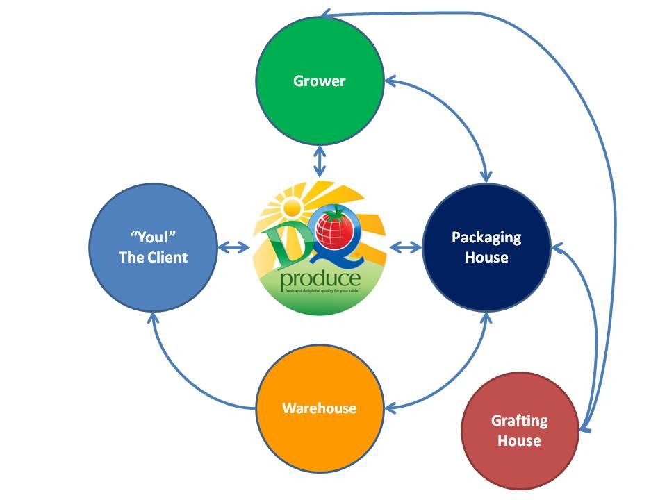 dqpdiagram-v1